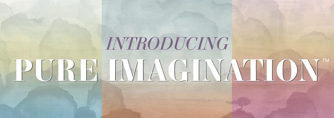 Introducing Pure Imagination