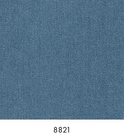 8821 Denim Walls