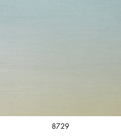 8729 Mirage
